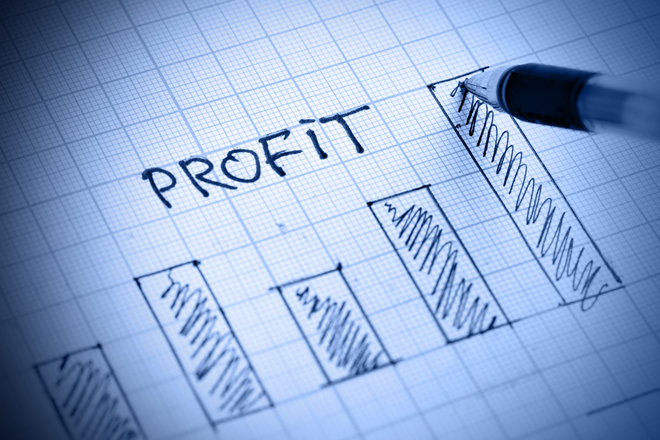what is a profit and loss statement how to read p l