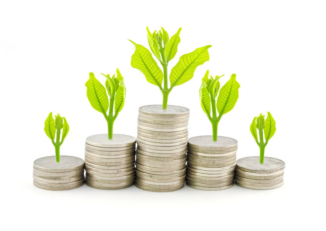 401(k) Plan: What It Is and How to Choose One